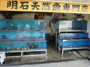 明石天然魚専門店
